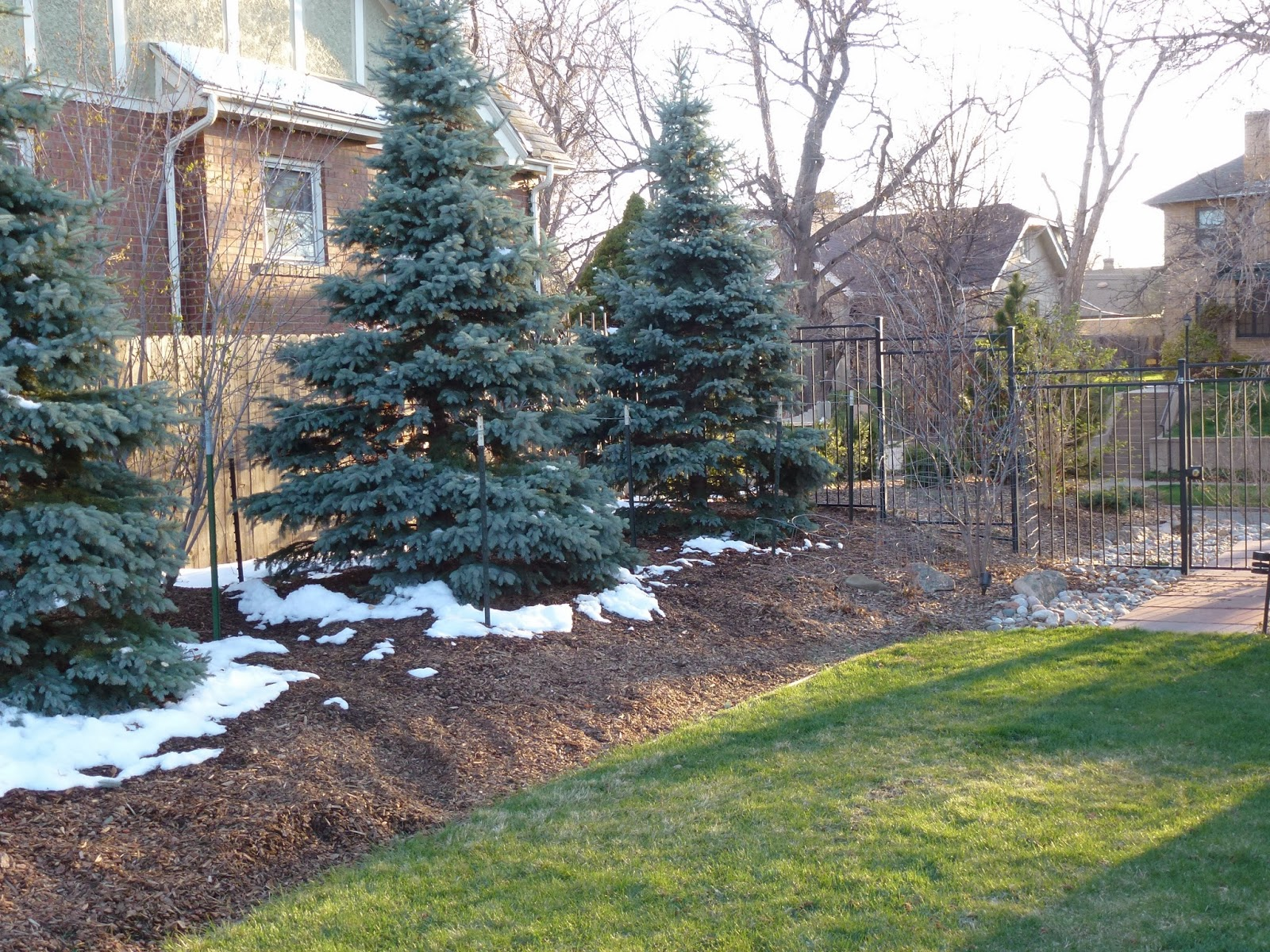 Winter Mulching in Toronto
