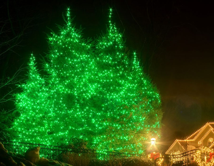 tree lights installation services for residents and businesses in the GTA