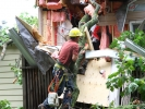 emergency-removal-of-a-large-dead-oak-in-toronto-06