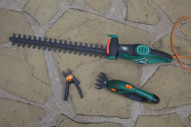 Prepare all the necessary tree pruning tools