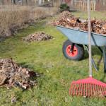 Spring Yard Garden Clean Up Services Toronto