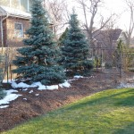 The Importance of Winter Mulching
