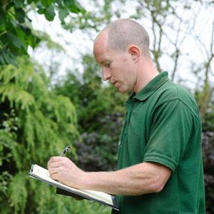 Tree Pest Report in Toronto