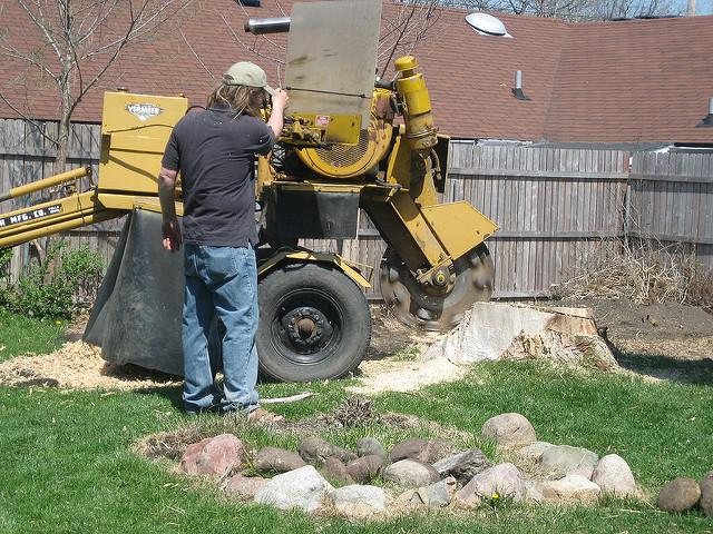 Tree Stump Removal Methods
