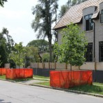 Trees on Your Property Can be Removed, Preserved or Protected with Injury