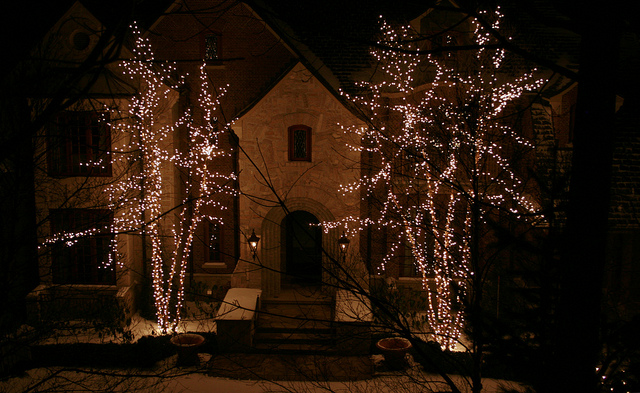 We Offer a Wide Choice of Holiday Lights in Toronto