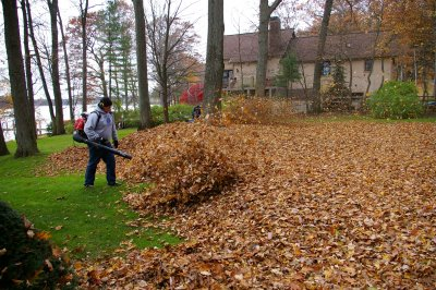 We Provide All Types of Fall Cleanup Services in Toronto